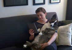 Corgis can provide great solace after the death of a loved one or comfort you if you are sick. | 14 Reasons Why Corgis Are The Smartest Animals In The World