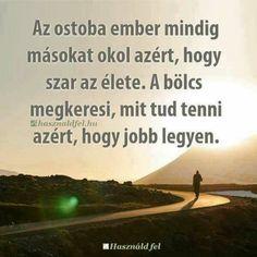 Karma, Einstein, Life Quotes, Humor, Motivation, Words, Beach, Happy, Outdoor