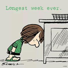 Weekend Quotes : Longest week ever, it's finally friday. - Quotes Sayings Snoopy And Charlie, Snoopy Love, Charlie Brown And Snoopy, Snoopy And Woodstock, Snoopy Friday, Comics Peanuts, Peanuts Cartoon, Peanuts Snoopy, Snoopy Quotes