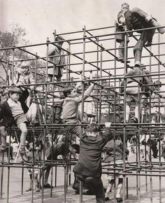 Monkey bars! Been there, done that, still alive!! ;) lol