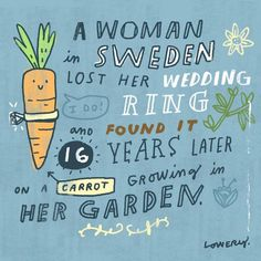 Random Illustrated Facts by Mike Lowery | The Dancing Rest http://thedancingrest.com/2016/01/07/random-illustrated-facts-by-mike-lowery/