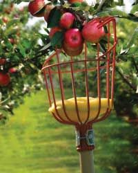 27 Best Harvesting Tools images | Harvesting tools ...