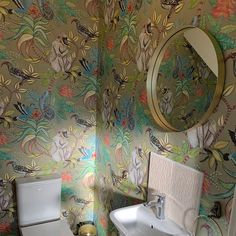 This majestic Savuti Wallpaper forms part of Cole & Son's Ardmore Collection. Stylish and tasteful, this magnificent pattern is an ideal choice for feature walls. Cole And Son Wallpaper, African Traditions, Feature Walls, Scale Design, Rare Birds, Bathroom Wallpaper, Old Stone, Original Wallpaper, Designer Wallpaper