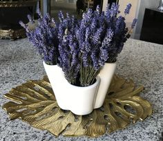 Dried lavender from my garden