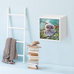 """Und alle nur so """"Oooooooh!"""" - Design WUSCHEL auf IKEA Valje Wandschrank #creatisto #eule #valje Ikea Valje, Ladder Decor, Magazine Rack, Shelves, Cabinet, Storage, Furniture, Design, Home Decor"""