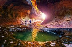 The Great Outdoors is calling. Take a hike! Badass Pictures, Epic Photos, Cool Photos, Zion National Park, National Parks, Kodak Moment, Animal Rescue Site, His Travel, Travel Articles