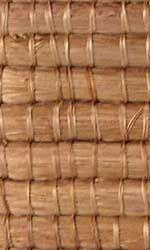 sisal cultivado em regies semiridas paraba e bahia do sisal