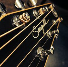 My fantastic Seagull guitars  GnG