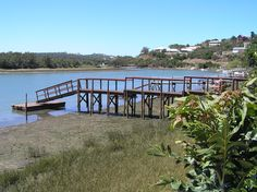 Cowie River in Port Alfred River Mouth, December Holidays, Knysna, Port Elizabeth, Us Beaches, Places Of Interest, Alexandria, Garden Bridge, South Africa