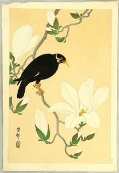 Ohara Koson: Indian Hill Minor and Magnolia - Ca. 1930s