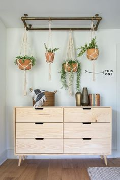 """A fun name for a fun succulent. If you're going for a more modern look, the """"String of Bananas"""" is the plant for you. Hanging these on hooks in your ceiling is an easy way to bring a corner of your home to life—just be sure not to overwater! 