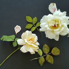 Crepe paper (and real) diseased roses by Lynn Dolan - Is it live or is it Memorex?