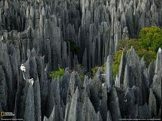 Reserva Natural Integral do Tsingy de Bemaraha – floresta de pedra em Madagascar.