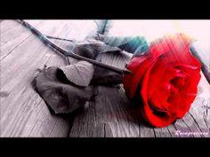 ▶ Sandra de Sá & Michael Sullivan -Entre nós ♥ - YouTube