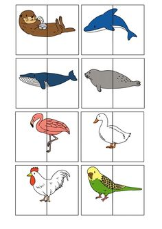 nl , animal match for preschool, free printable animals silly animals animal mashups animal printables majestic animals animals and pets funny hilarious animal Toddler Learning Activities, Preschool Education, Animal Activities, Free Preschool, Montessori Activities, Preschool Worksheets, Preschool Activities, Teaching Kids, Puzzles Für Kinder