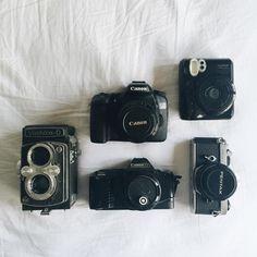 Pequena coleção de câmeras com a Yashica D, Canon D70, Canon T70, Pentax e Instax Mini 50.