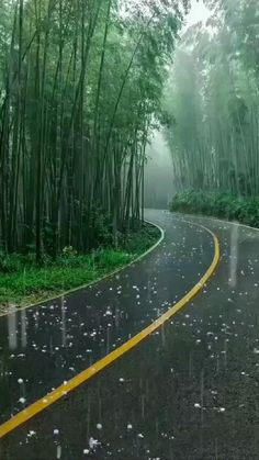Cool Pictures Of Nature, Beautiful Photos Of Nature, Amazing Nature, Beautiful Places, Beautiful Landscape Wallpaper, Scenery Wallpaper, Beautiful Landscapes, Rain Photography, Best Background Images