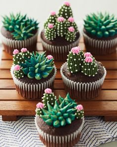 These succulent cupcakes are almost *too* cute to eat. 🌵😍 These succulent cupcakes are almost *too* cute to eat. 🌵😍 These succulent cupcakes are almost *too* cute to eat…. Cupcakes Succulents, Kaktus Cupcakes, Garden Cupcakes, Beautiful Cakes, Amazing Cakes, Cupcake Recipes, Dessert Recipes, Blooming Succulents, Succulents Art