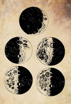 Galileo's sketches of the moon png by VellasCollageSheets on Etsy, $1.00