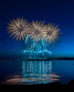 Vancouver Festival of Lights Fireworks - which is now the largest fireworks competition in the world.