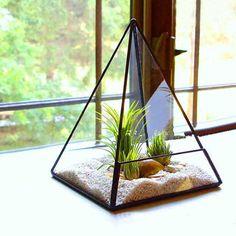 PYRAMIDE PLANTE MODERNE POUR PLANTES ET CACTUS (EN VERRE)  ...........  Parfait pour des petites plantes et objets ainsi que pour ajouter une table décorative à n'importe quel espace, cette pyramide en verre moderne conçu pour terrarium fait un excellent ajout à votre intérieur.    La structure en verre vous permet de voir tous les côtés de la plantes, bougies, ou objets décoratifs disposés à l'intérieur, et la pyramide unique structure ajouter la parfaite touche d'élégance, style moderne.