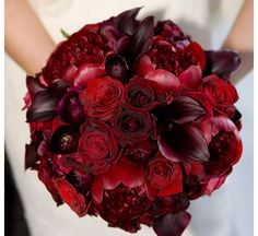 - (Covered with black ribbon and pearl accent) Red-bridal-bouquet-dramatic-wedding-reception-decor. Elegant Wedding Bouquet Comprised Of: Red Peonies, Red Roses, Red Bouquet Wedding, Red Wedding Flowers, Bride Bouquets, Wedding Colors, Red Bridal Bouquets, Bridesmaid Bouquets, Bridesmaids, Deep Red Wedding, Purple Wedding