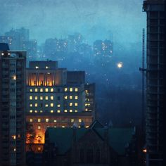 Toronto's Mixed Forest. Blue Mist of December (by Katrin Ray) Nocturne, Light Photography, Landscape Photography, Dramatic Lighting, Blue Hour, Night City, Urban Landscape, City Lights, Mists