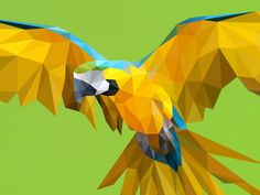 Poly yellow macaw