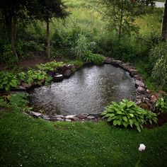 #GardenPond #WaterFeatures / Heart shaped garden pond with hostas. Via: