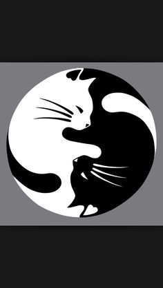 Black and White Yin Yang Cats Counted Cross by InstantCrossStitch Pebble Painting, Pebble Art, Stone Painting, Stone Crafts, Rock Crafts, Art Rupestre, Art Pierre, Rock Painting Designs, Pet Rocks