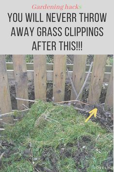 here are 9 reasons Why You'll never throw away grass clippings! garden ideas, gardening ideas, gardening for beginners, gardening design, gardening tools, gardening hacks, gardening and landscape, gardens and gardening ideas #gardening #gardenhacks #grass