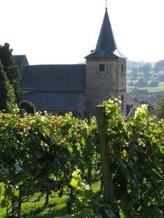 Wijndomein Sint Mauritius, Schin Op Geul, Zuid-Limburg.