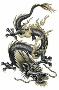 dragon tattoos picture gallery dragon tattoo designs