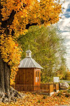 it's autumn again - Tarnow - Poland