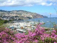 Google Image Result for http://www.boardseekermag.com/travel_features/madeira/pics/T_023_funchal_large.jpg