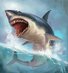 Find Great White Shark On Background Sea stock images in HD and millions of other royalty-free stock photos, illustrations and vectors in the Shutterstock collection. Thousands of new, high-quality pictures added every day. Shark Images, Shark Pictures, Shark Photos, Great White Shark Drawing, Shark Books, Baby Shark Doo Doo, Sea Turtle Art, Shark Art, Shark Tattoos