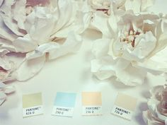 paper flowers and soft color pantone swatches