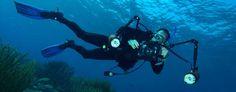 Enrique Alpeñes y el arte de la fotografía submarina