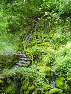 Michel's blog - Il giardino Italiano. Need 2 say more? Bekijk meer tips op www.tuinen.nl
