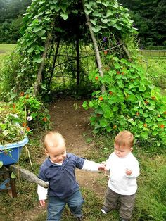How to build a living playhouse that helps kids to understand nature | The Owner-Builder Network