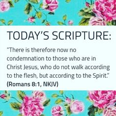 Today's Scripture, Scripture For Today, Romans 8, In The Flesh, Jesus Christ, Spirit