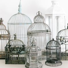Birdcages and tall white lanterns - Propcellar.com