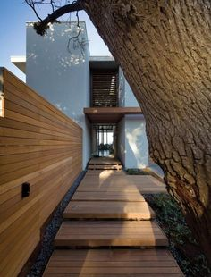 Backyard Landscaping Ideas - Upon arrival at to this modern house, there are two milkwood trees that flanking the entrance, and a floating timber step platform and pergola lead towards the front door. Architecture Durable, Detail Architecture, Landscape Architecture, Interior Architecture, Interior And Exterior, Landscape Design, Backyard Fences, Backyard Landscaping, Landscaping Ideas