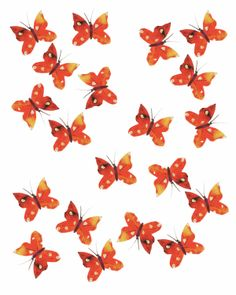 Orange butterfly print by Sarah Millin