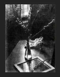 Still Life Photography, Art Photography, Still Life Photos, Ansel Adams, Less Is More, Antique Glass, Life Inspiration, Black And White Photography, Concept Art