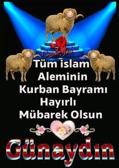 Islam, Movies, Movie Posters, Films, Film Poster, Cinema, Movie, Film, Movie Quotes