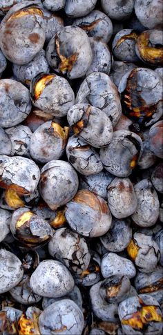 Roasted chestnuts in the coals - Are traditional in winter