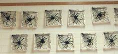Hämähäkinverkko ja hämähäkki.