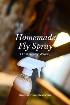 Homemade Fly Spray (that really works!)