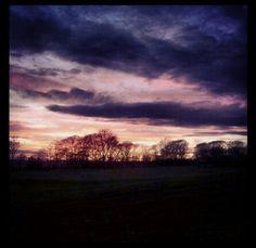 Sunset across whitburn park, sunderland #trees
